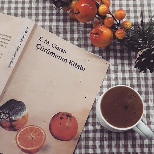 Çürümenin Kitabı Konusu Ne? – Emil Michel Cioran